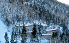 cabin mtnsel
